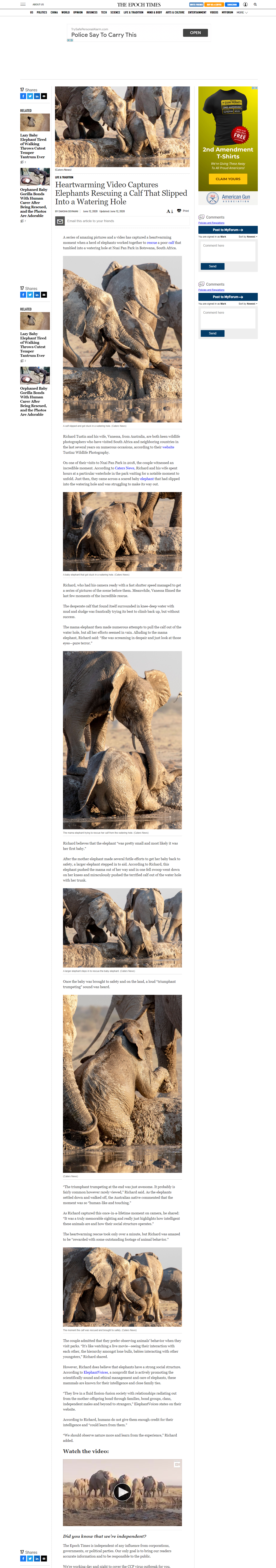 Epoch News, Elephant Save at water hole